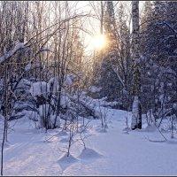 13. День зимнего солнцестояния---05 :: Владимир Холодный