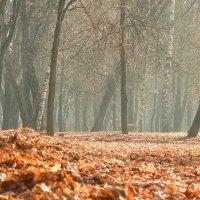 Осенний этюд :: Александр Лебедев