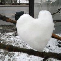 Ледяное сердце... :: Мила