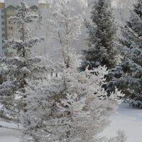 Зима в городе :: Шухрат Батталов