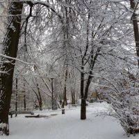 Снег :: Mary Коллар