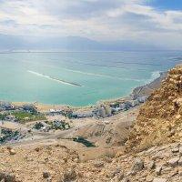 Мёртвое море. Эйн-Бокек. :: Алексей Окунеев