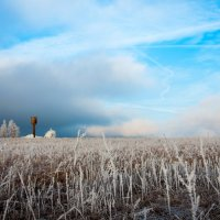 Пейзаж с водонопорной башней :: Алексей Кошелев
