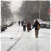 зима в Питере :: muh5257