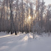 Мороз и солнце. :: Kassen Kussulbaev