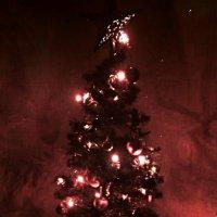 Новый год :: Ксения -