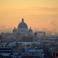 Морозное утро :: Наталья Левина