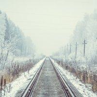 Дорога в никуда :: Roman Korovkin