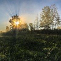 Солнечное утро :: Валентин Котляров