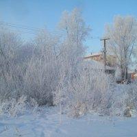 Иркутск зимний :: alemigun