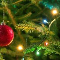 Новогоднее настроение :: Екатерина Савина