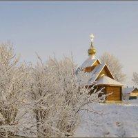 Морозный день :: lady v.ekaterina