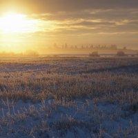 Зимний туман на закате :: Валерия заноска