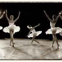 "из серии ""Грезы о балете"" :: Стас Григорьев"