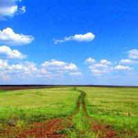 Оренбургская степь :: Константин Филякин