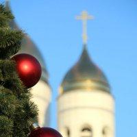 Скоро новый год :: Елена Сидорова