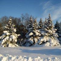 Зимний пейзаж :: laana laadas