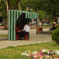 Пианист :: Леонид Хачатрян