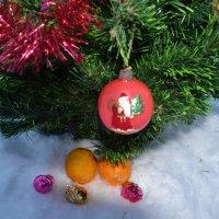 Апельсины на снегу. :: zoja