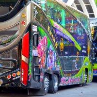 """Произведение """"автобусного искусства"""" :: Дмитрий Боргер"""