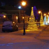 Зимой И Летом Разным Цветом!!! :: Алексей Лукаев