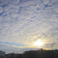Слоисто-кучевые облака . :: Мила Бовкун