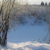 Нежная, снежная зима :: Вера Андреева