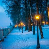 огни в городском парке. :: Алексей Кошелев