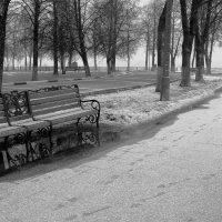 Опустевшие скамейки. :: Алла ************