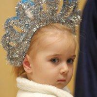 Снежная королева. :: Larisa Gavlovskaya