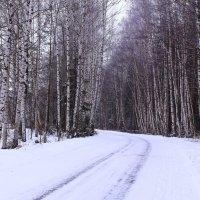 Зимние повороты :: Татьяна Ломтева