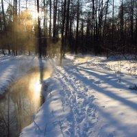 Img_7741 - Крещение-2014 :: Андрей Лукьянов