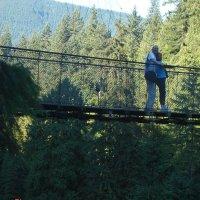 На висячем мосту в парке Капилано. :: Владимир Смольников