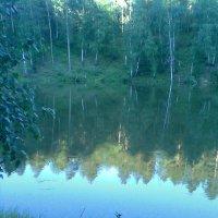 Прекрасный лесной пруд 3 :: Владимир Ростовский