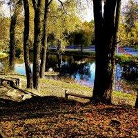 """Осень, озеро, """"Дубки"""" :: алекс дичанский"""
