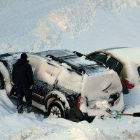 Утро после снежной бури. :: Александр Стаховский