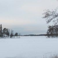 Северная зима :: Людмила