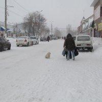 Холодно :: Н.Н. Баранова