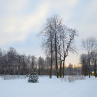зима :: Елена
