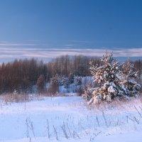 Морозный вечер :: Viktor Pjankov