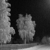 Ночь...снег идёт.. :: Галина Полина