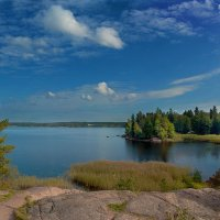 Панорама берега Финского залива в парке Монрепо :: Надежда Лаптева