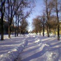 В городе зима :: Миша Любчик