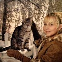 Первый снег и кошка :: Olga Zhukova