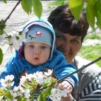 весна.цветущий сад. :: Elena Ishchenko