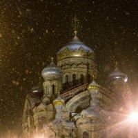 Новогодняя :: Mary Akimova