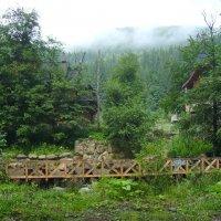 Зона  отдыха  в  Карпатском  лесу :: Андрей  Васильевич Коляскин