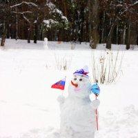 Наш снеговик :: Татьяна_Ш