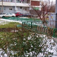 Новогодние сюрпризы :: Светлана Лысенко