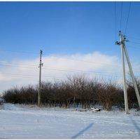 Сельская зима... :: Тамара (st.tamara)